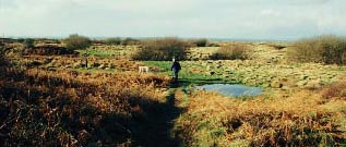 Kenfig nature reserve
